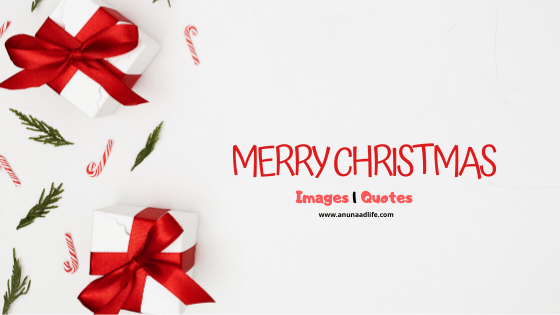 Merry Christmas Wishes and Quotes