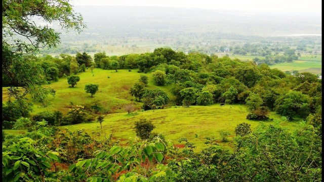 Travel Guide to Ananthagiri Hills
