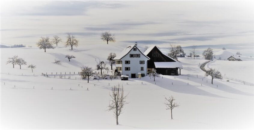 Protect Your Farm Building From Snow Load in Winter